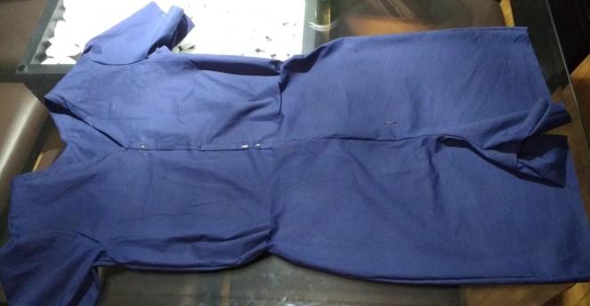 macaquinho-azul-9